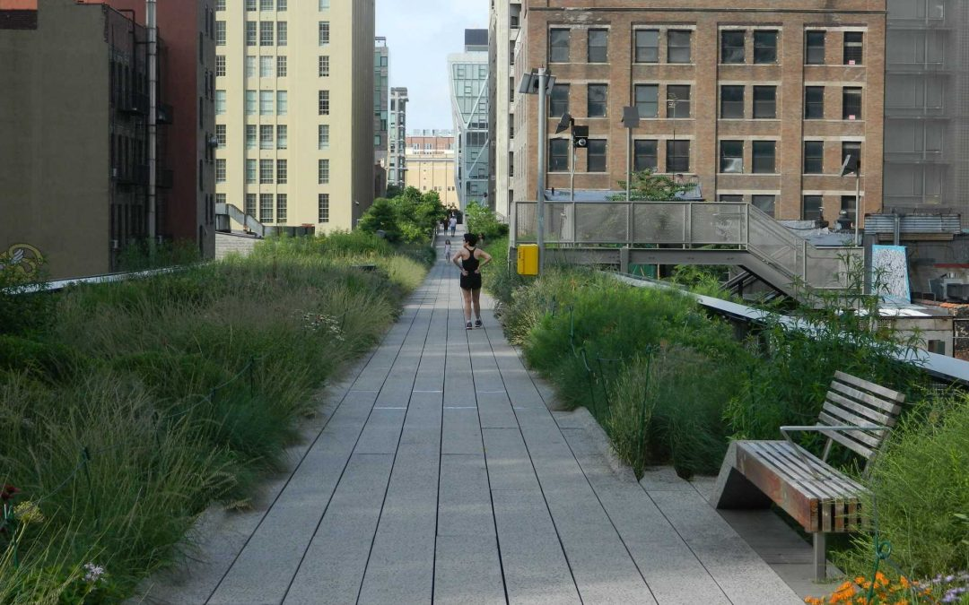 HIGH LINE STORIES #05 – più di un singolo parco