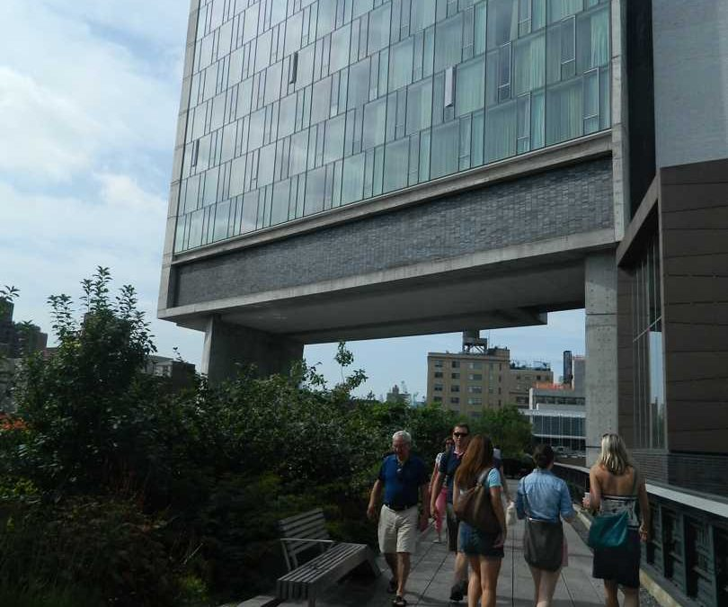 HIGH LINE STORIES #06 – amici della High Line